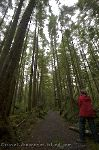 Photo Cape Scott Hiking