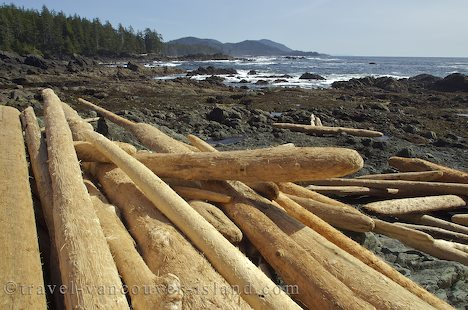 Photo: Cape Palmerston BC