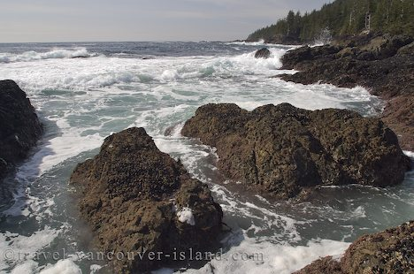 Photo: Raft Cove Provincial Park Coast BC Canada